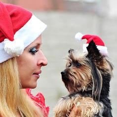 Christmas Merry Christmas Santa Cloth Christmas Hats